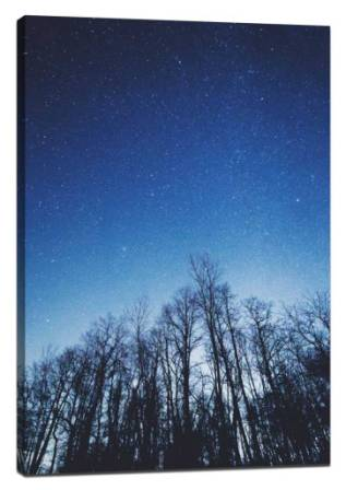 Photograph the starry sky